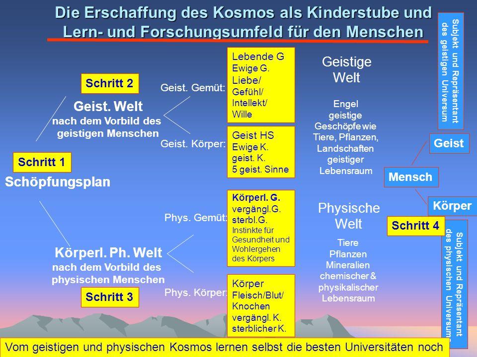 Die Erschaffung des Kosmos als Kinderstube und Lern- und Forschungsumfeld für den Menschen