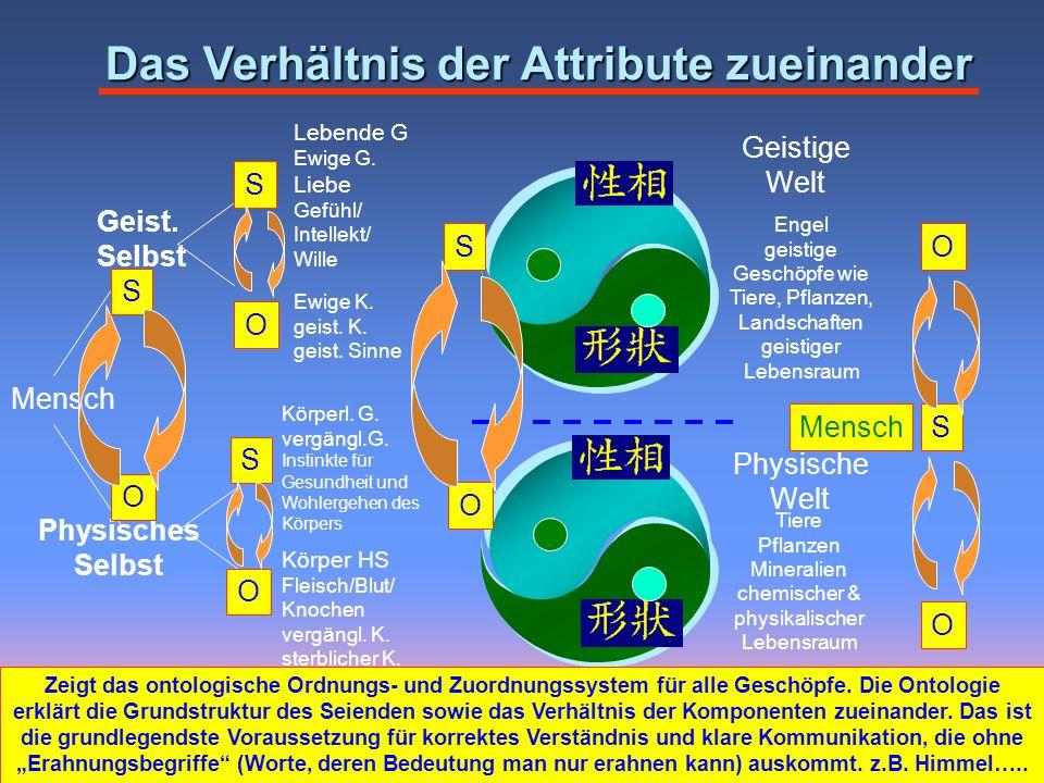 Tiere Pflanzen Mineralien chemischer & physikalischer Lebensraum