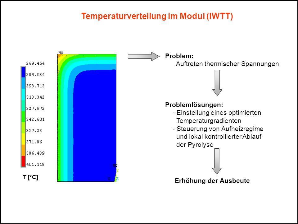 Temperaturverteilung im Modul (IWTT)