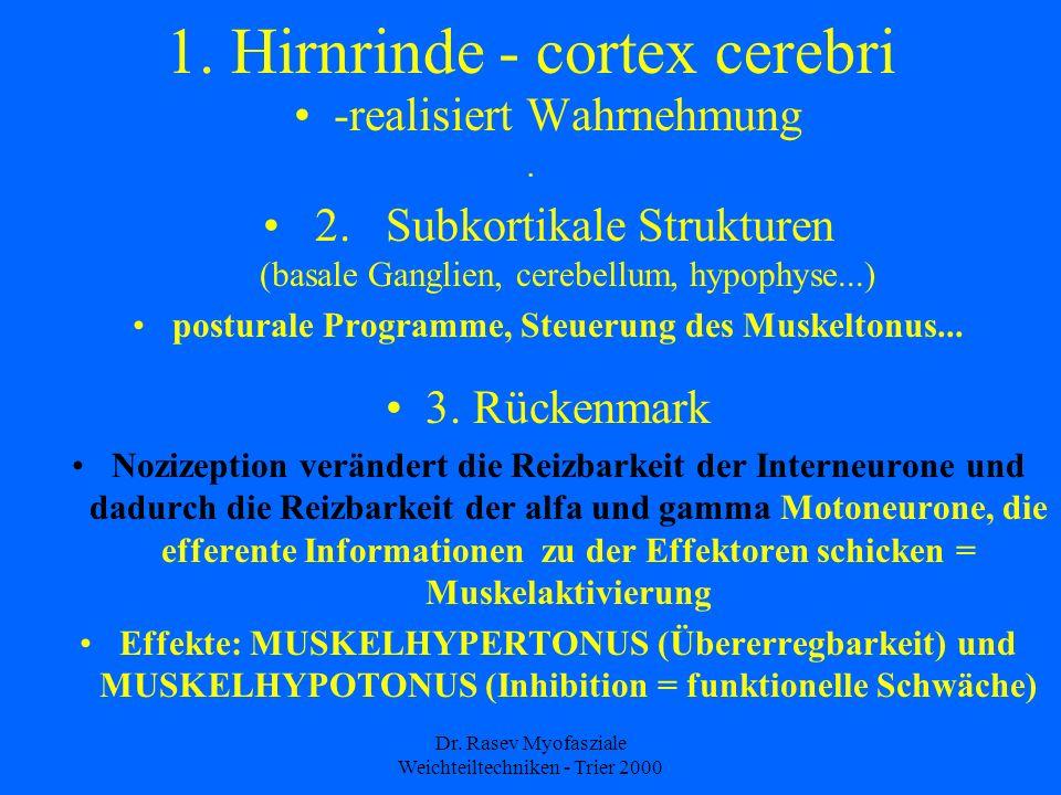 1. Hirnrinde - cortex cerebri