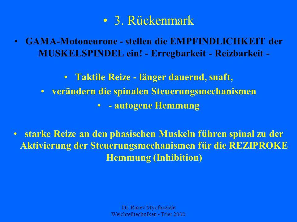 3. Rückenmark GAMA-Motoneurone - stellen die EMPFINDLICHKEIT der MUSKELSPINDEL ein! - Erregbarkeit - Reizbarkeit -
