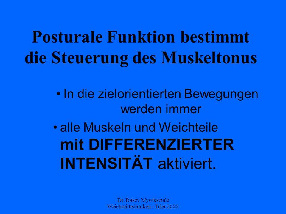 Posturale Funktion bestimmt die Steuerung des Muskeltonus