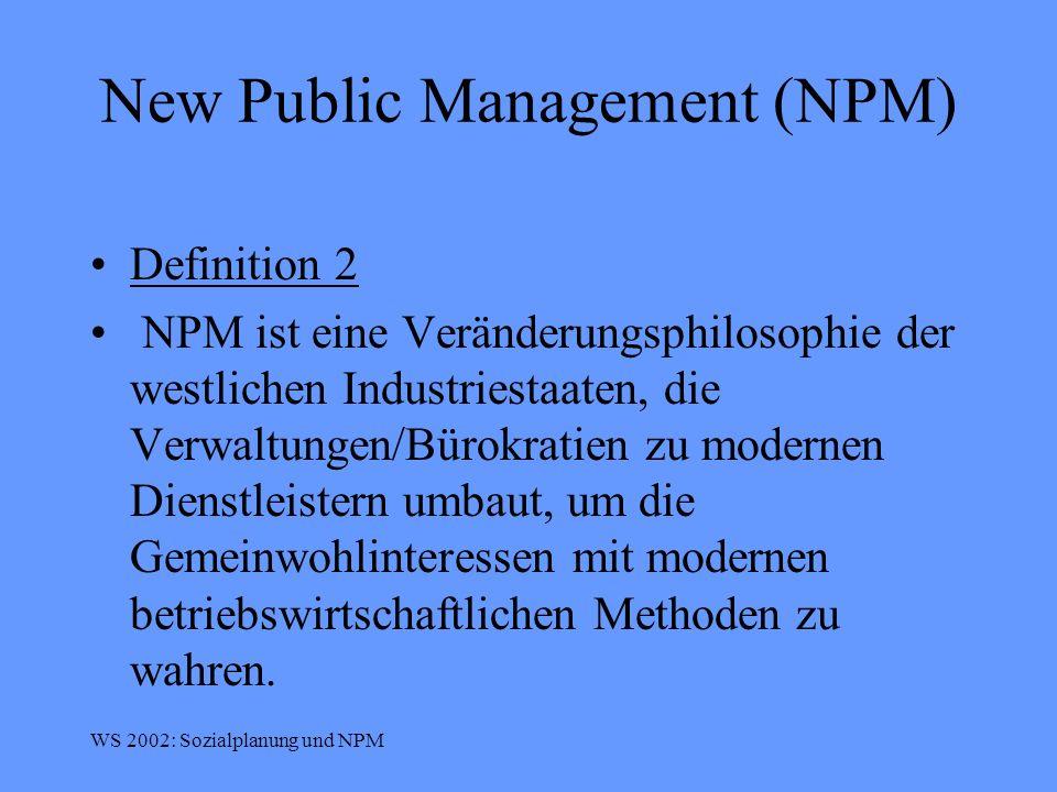 New Public Management (NPM)