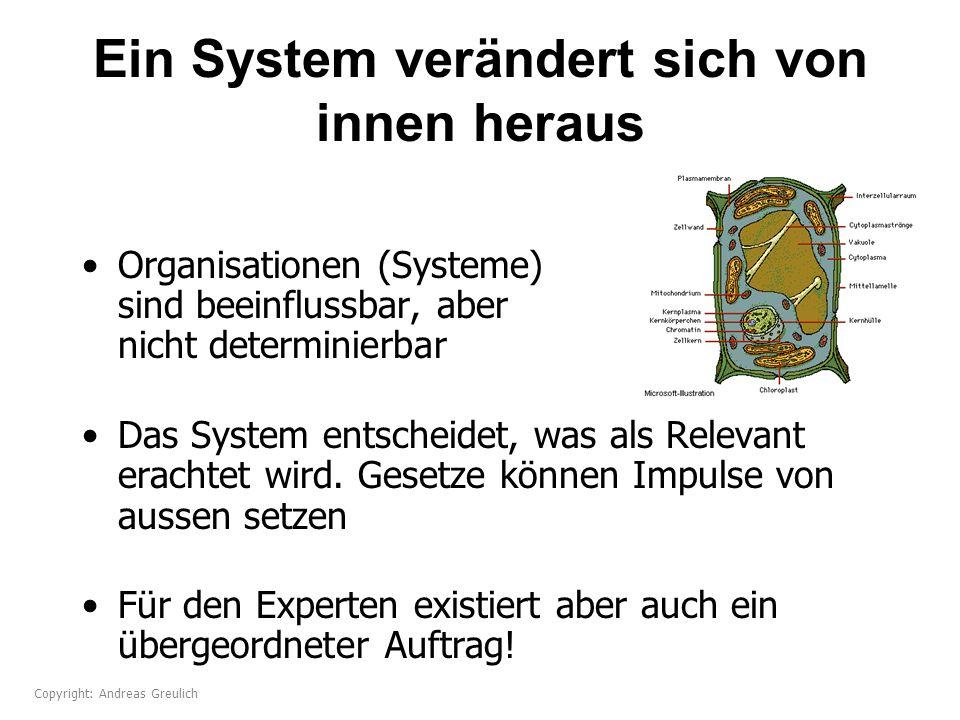 Ein System verändert sich von innen heraus