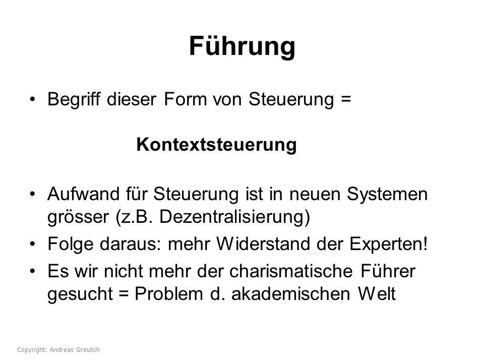 Führung Begriff dieser Form von Steuerung = Kontextsteuerung