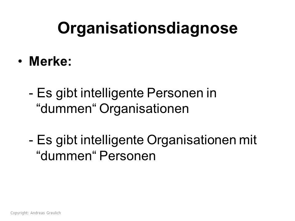Organisationsdiagnose
