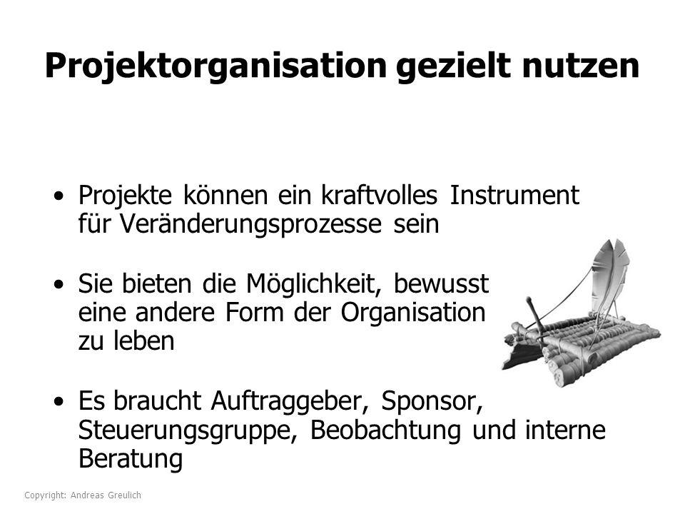Projektorganisation gezielt nutzen