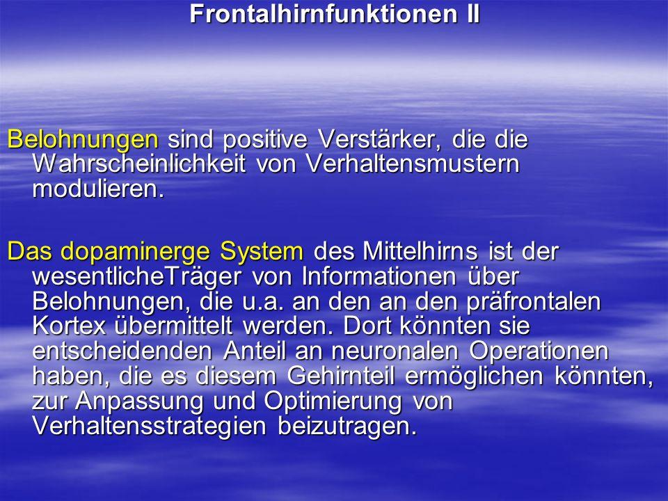 Frontalhirnfunktionen II