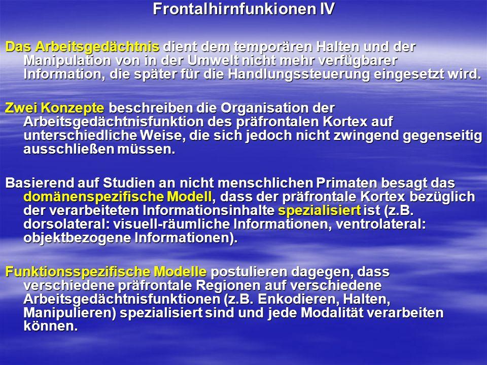 Frontalhirnfunkionen IV