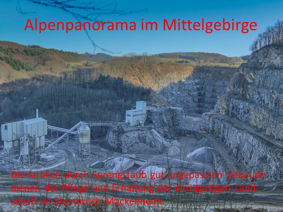 Alpenpanorama im Mittelgebirge