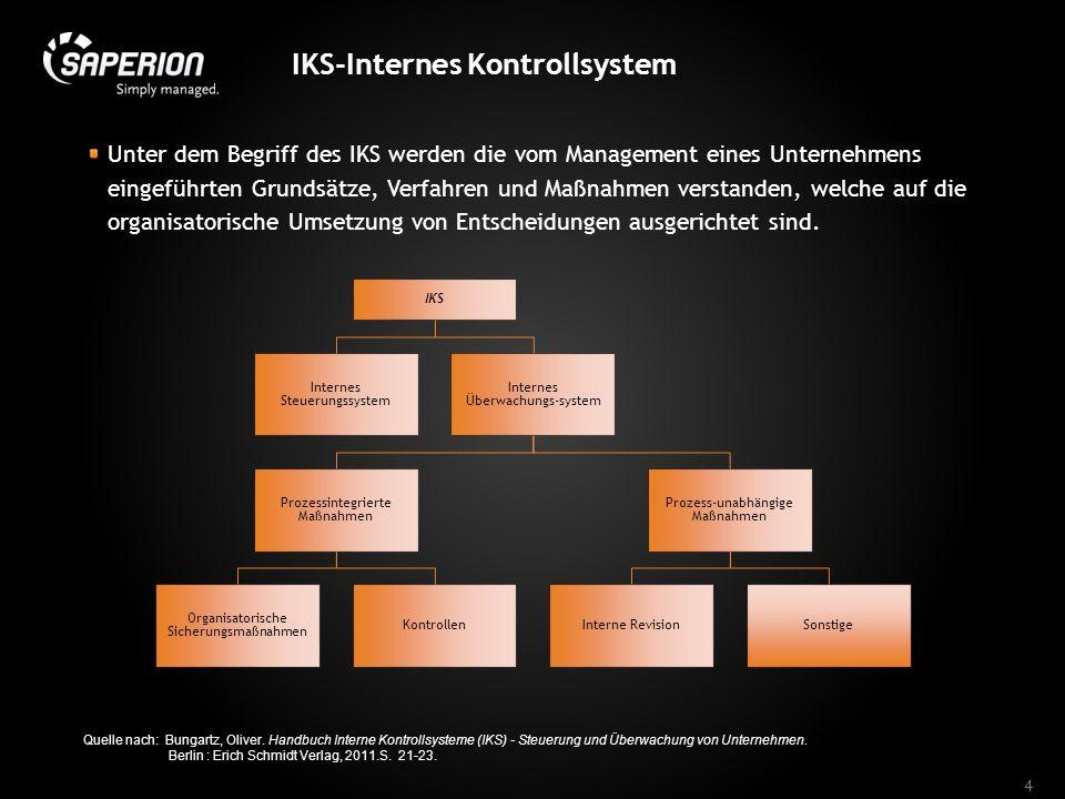 IKS-Internes Kontrollsystem