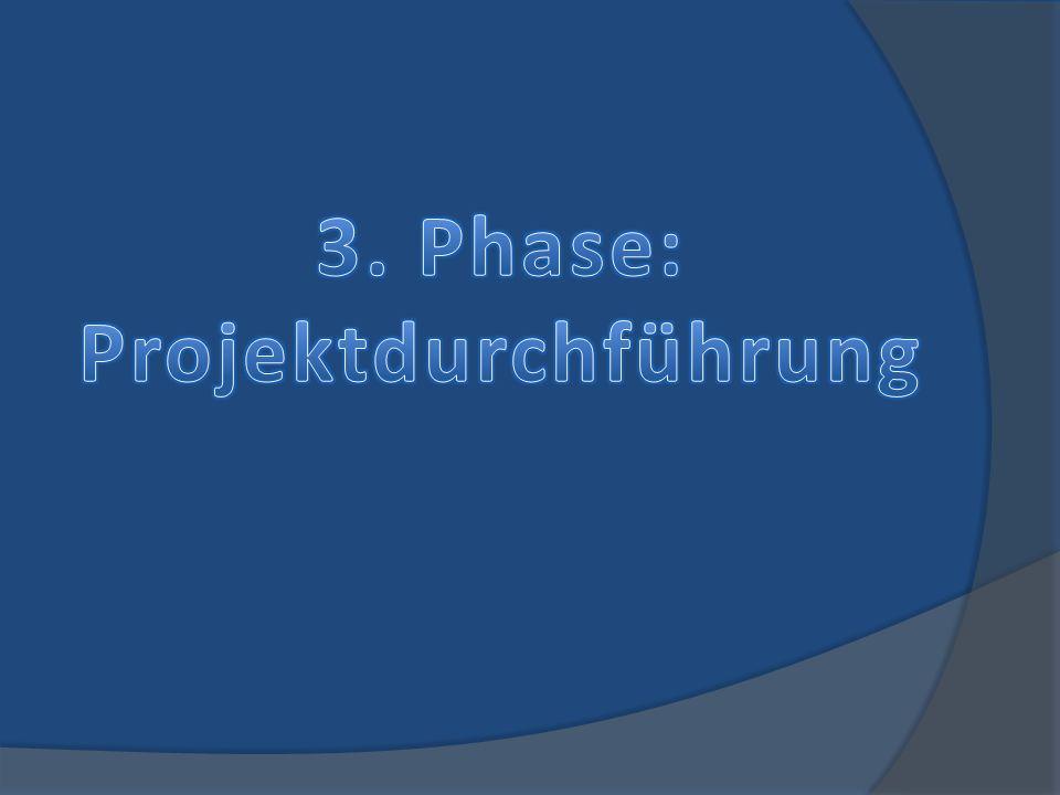 3. Phase: Projektdurchführung