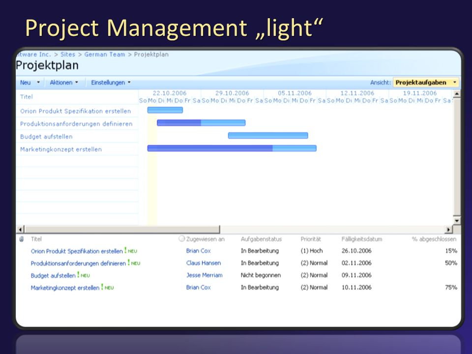 "Project Management ""light"