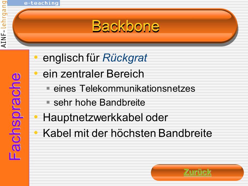 Backbone Fachsprache englisch für Rückgrat ein zentraler Bereich