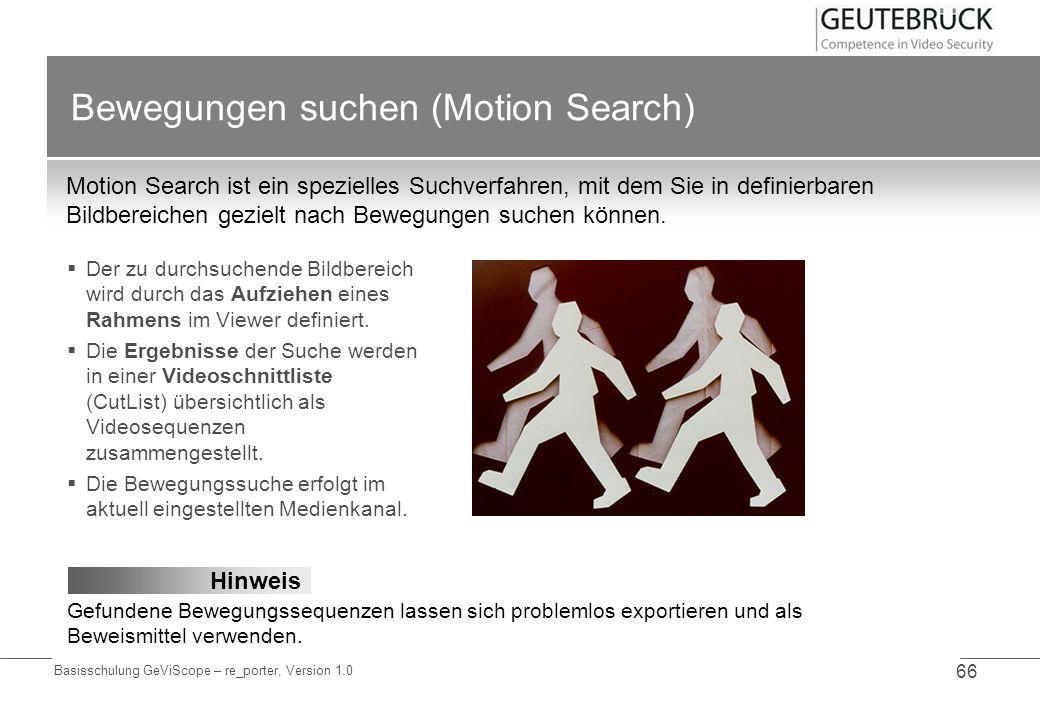 Bewegungen suchen (Motion Search)