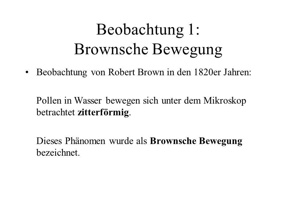 Beobachtung 1: Brownsche Bewegung