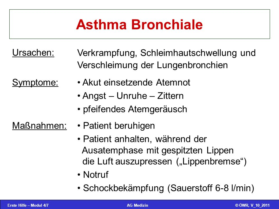 Asthma Bronchiale Ursachen: