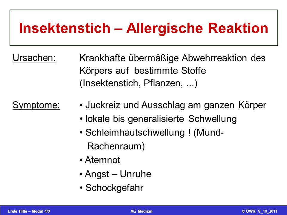 Insektenstich – Allergische Reaktion