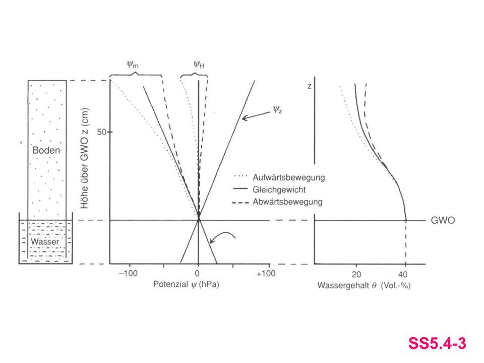 Das hydraulische Potential ψH, das Matrixpotential ψm, das Gravitations-potential ψz und der Wassergehalt im GGW (—), bei Versickerung (---) und kapillarem Aufstieg (∙∙∙∙).