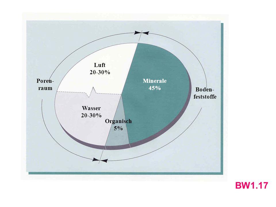 BW1.17 Luft 20-30% Wasser Minerale 45% Organisch 5% Poren-raum