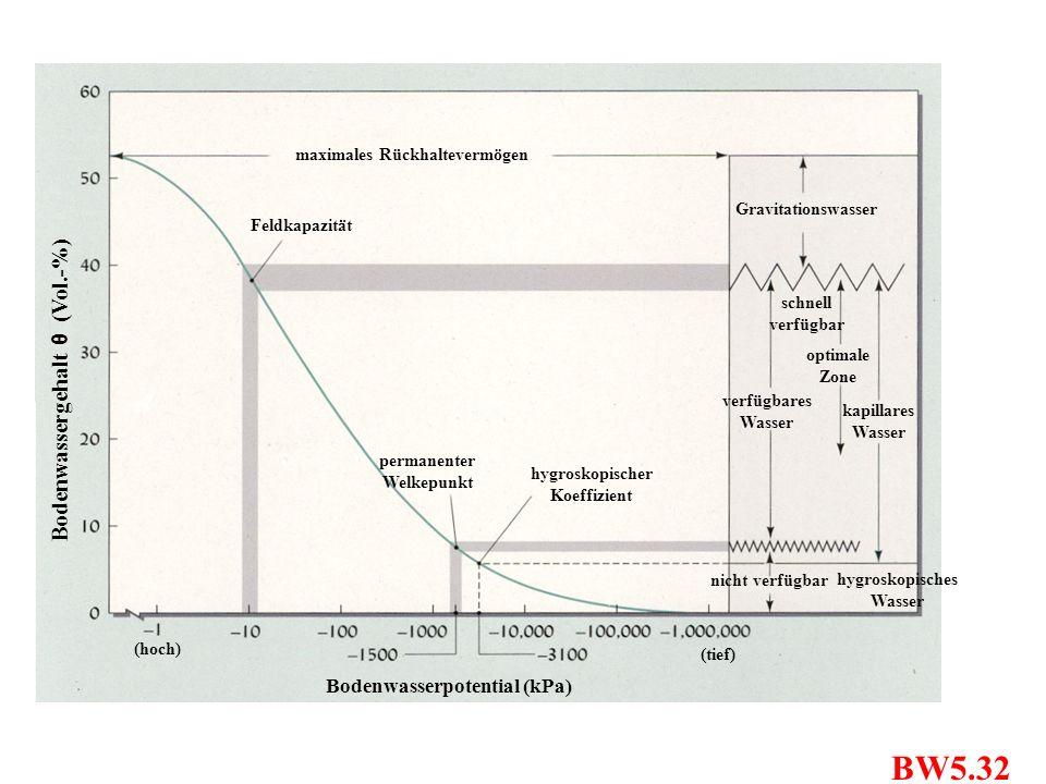 BW5.32 Bodenwassergehalt θ (Vol.-%) Bodenwasserpotential (kPa)