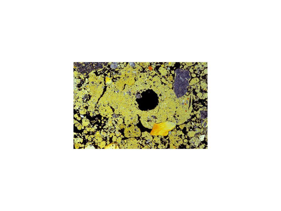 Eine Makropore und viele Mikroporen unter dem Mikroskop.