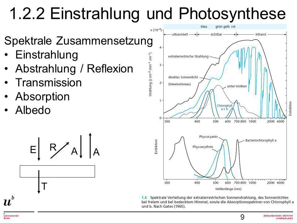 1.2.2 Einstrahlung und Photosynthese