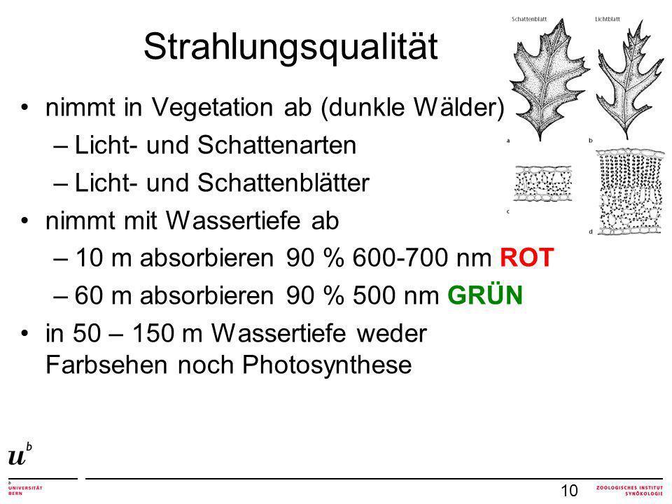 Strahlungsqualität nimmt in Vegetation ab (dunkle Wälder)