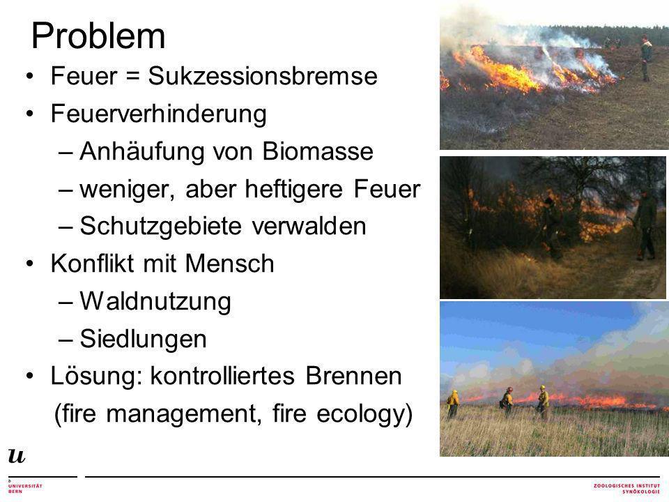 Problem Feuer = Sukzessionsbremse Feuerverhinderung