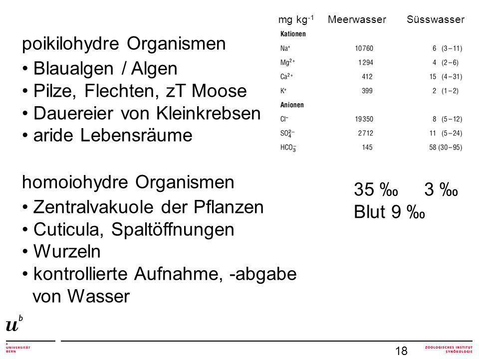 poikilohydre Organismen Blaualgen / Algen Pilze, Flechten, zT Moose
