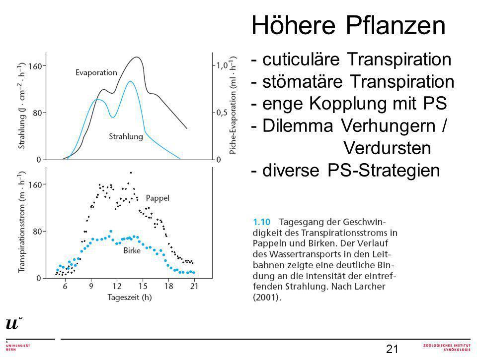 Höhere Pflanzen - cuticuläre Transpiration - stömatäre Transpiration