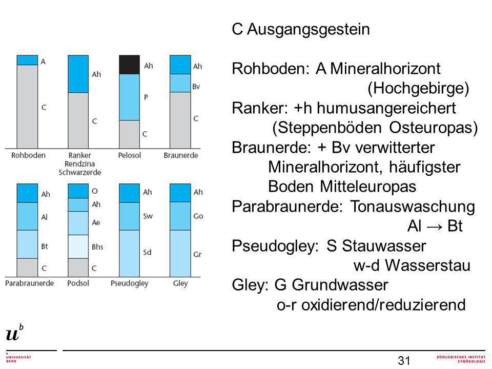 Rohboden: A Mineralhorizont (Hochgebirge) Ranker: +h humusangereichert