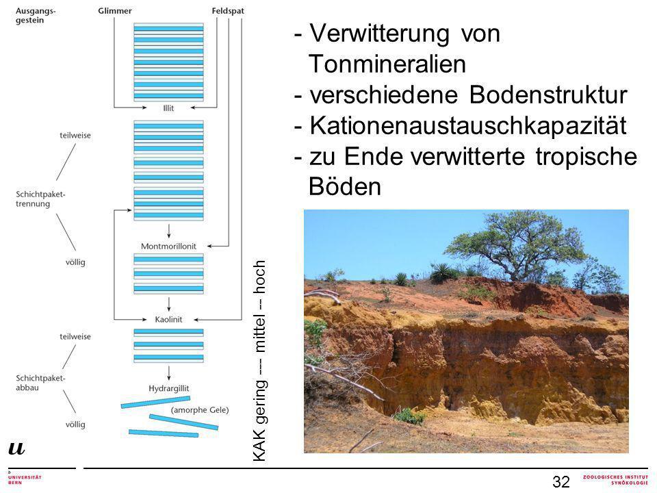 Verwitterung von Tonmineralien - verschiedene Bodenstruktur - Kationenaustauschkapazität - zu Ende verwitterte tropische Böden