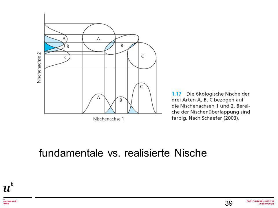fundamentale vs. realisierte Nische