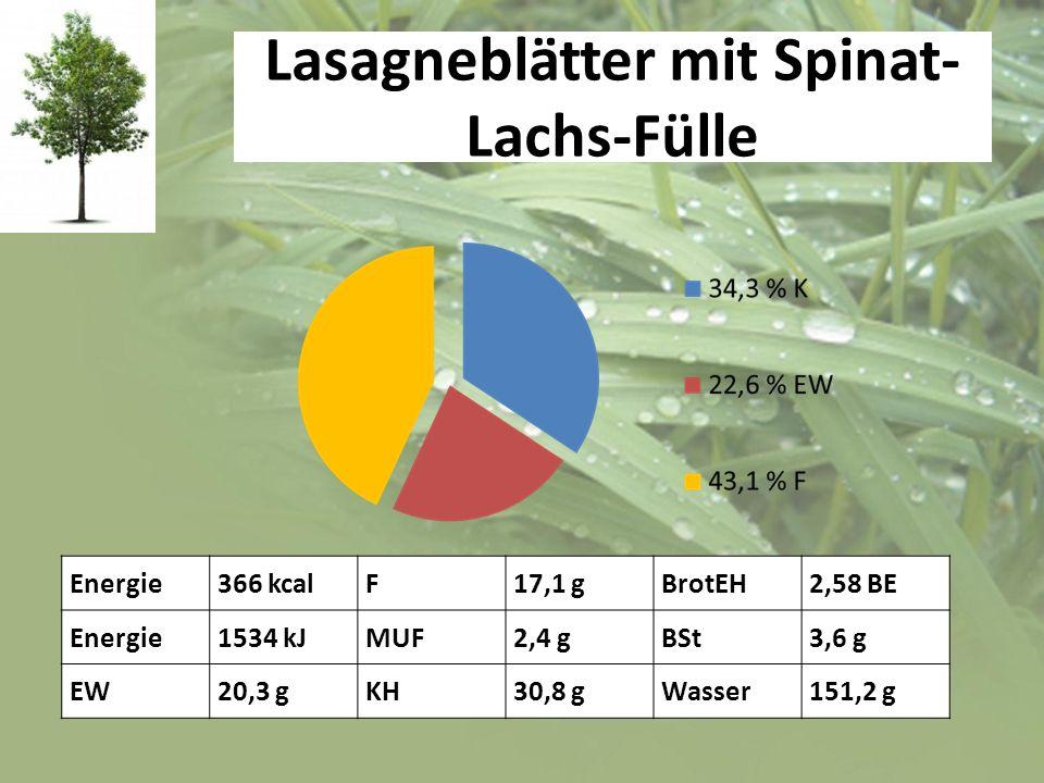 Lasagneblätter mit Spinat-Lachs-Fülle