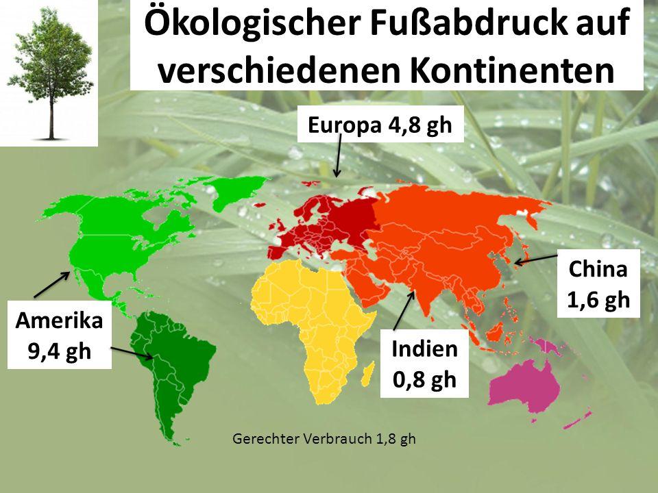 Ökologischer Fußabdruck auf verschiedenen Kontinenten