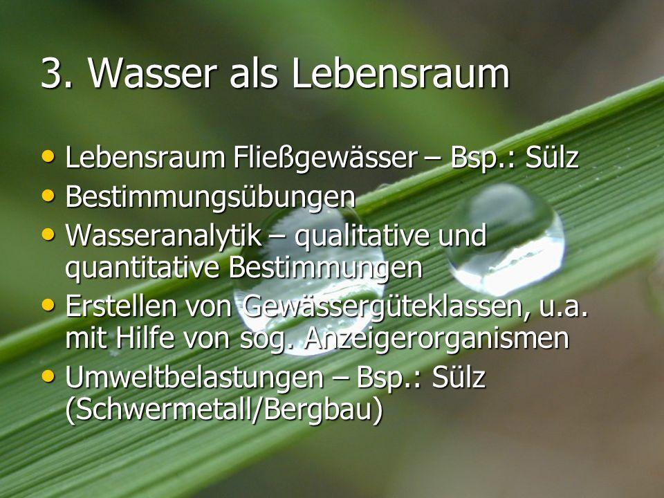 3. Wasser als Lebensraum Lebensraum Fließgewässer – Bsp.: Sülz