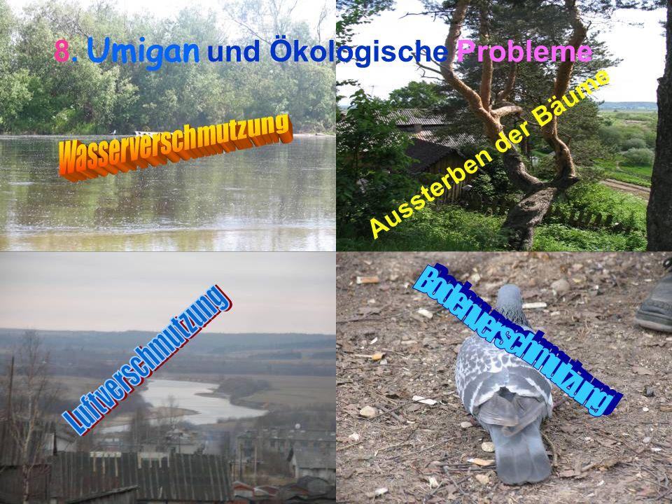 8. Umigan und Ökologische Probleme