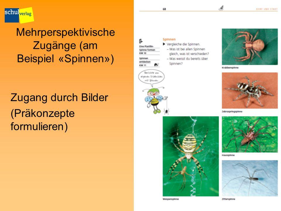Mehrperspektivische Zugänge (am Beispiel «Spinnen»)