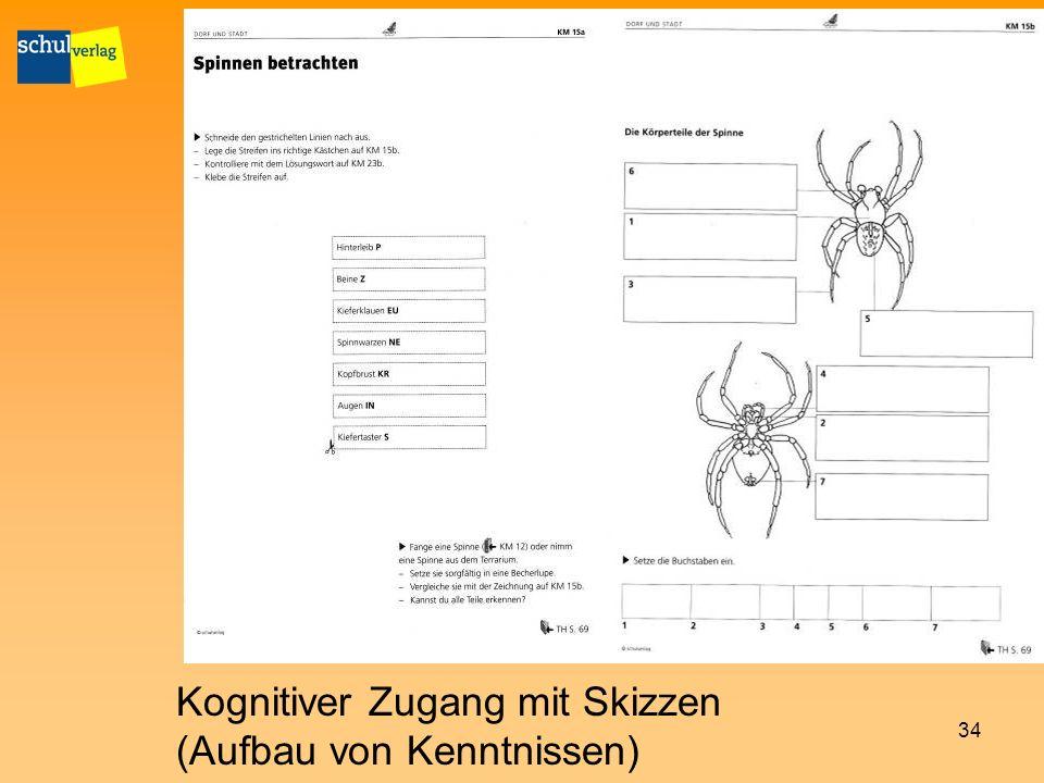 Kognitiver Zugang mit Skizzen (Aufbau von Kenntnissen)