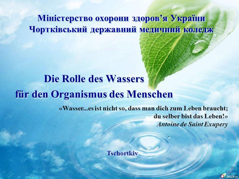 Die Rolle des Wassers für den Organismus des Menschen