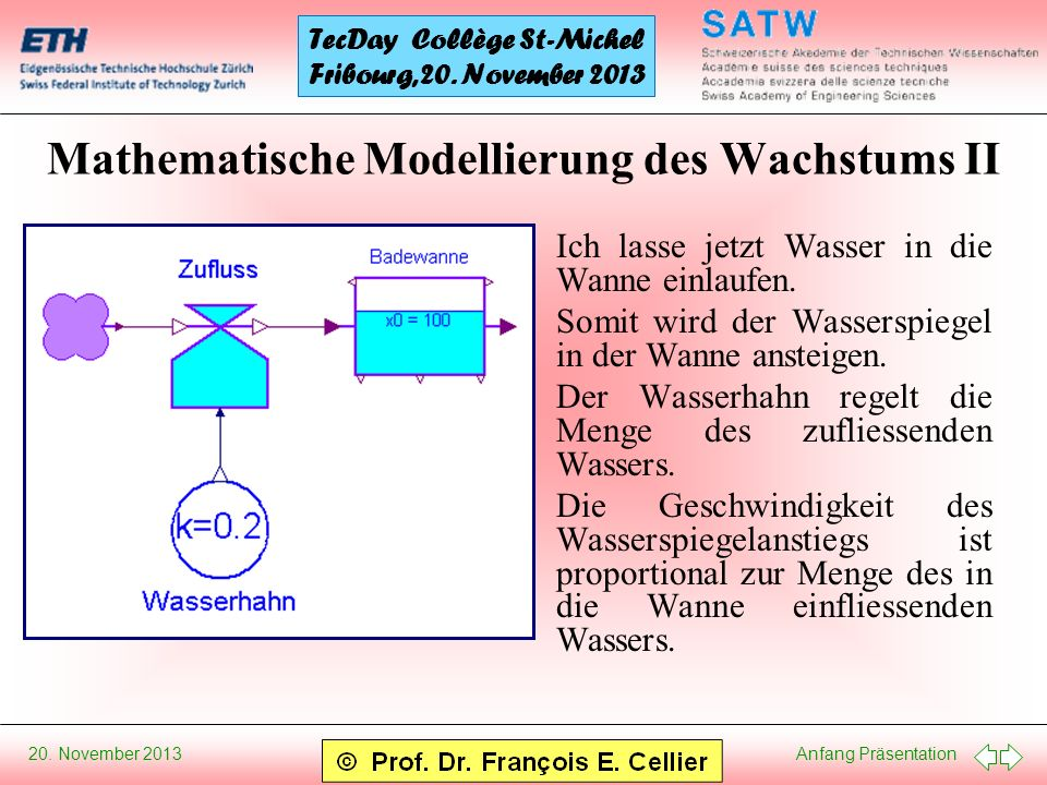 Mathematische Modellierung des Wachstums II