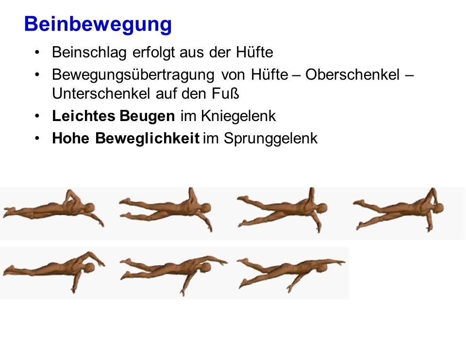Beinbewegung Beinschlag erfolgt aus der Hüfte