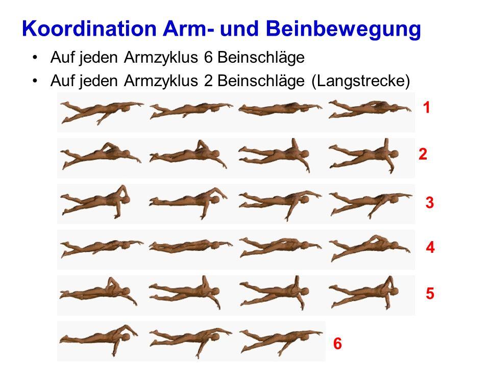 Koordination Arm- und Beinbewegung