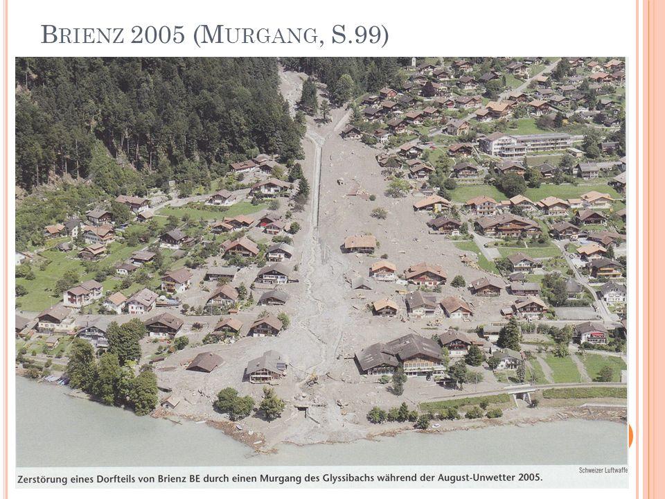 Brienz 2005 (Murgang, S.99)