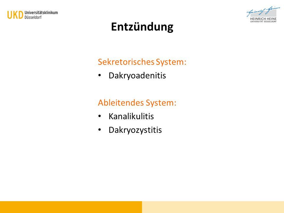 Entzündung Sekretorisches System: Dakryoadenitis Ableitendes System:
