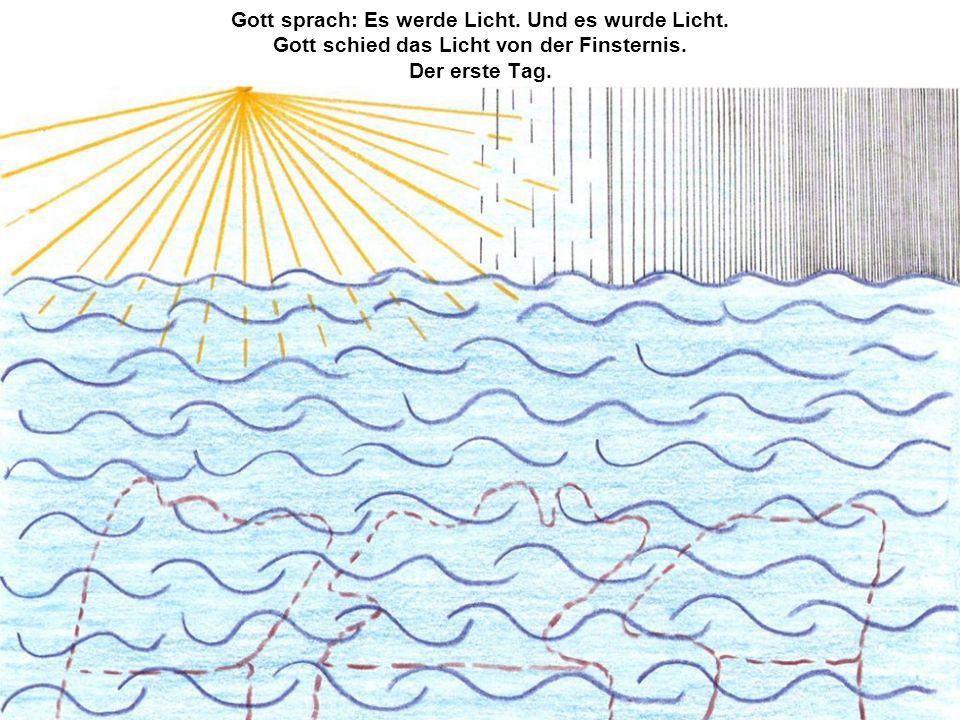 Gott sprach: Es werde Licht. Und es wurde Licht