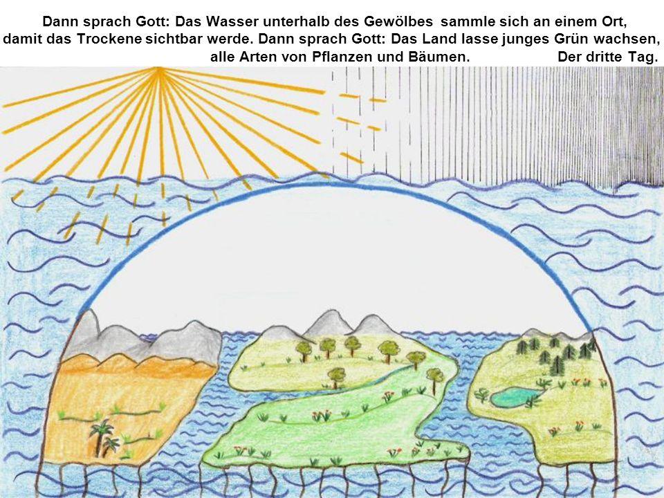 Dann sprach Gott: Das Wasser unterhalb des Gewölbes
