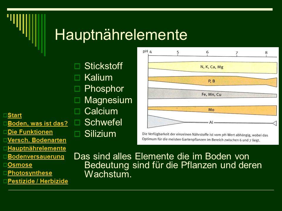 Hauptnährelemente Stickstoff Kalium Phosphor Magnesium Calcium