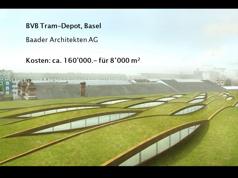 BVB Tram-Depot, Basel Baader Architekten AG Kosten: ca. 160'000.- für 8'000 m2